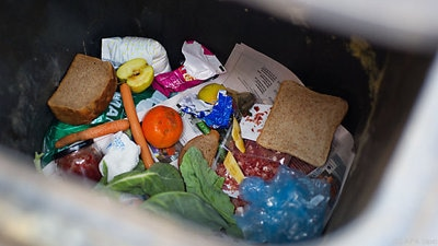 Facts on food waste in Central Europe